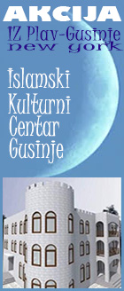 IKCGusinjeBan4.jpg