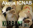 kurbaniICNAB2017.jpg