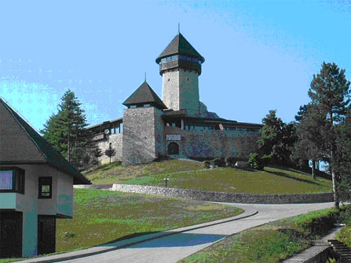 http://bosnjaci.net/foto/Kula_Muje_Hrnjice_big.jpg